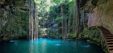 yucatan cenotes  secret swimming