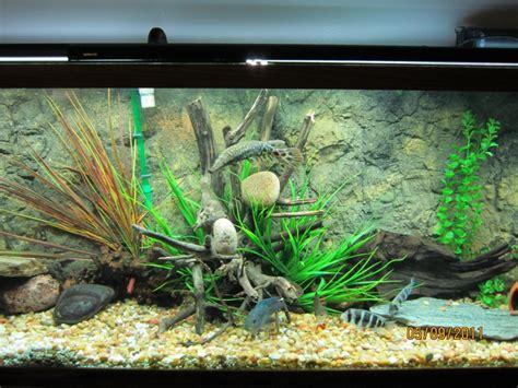 3d fish tank background fish tank backgrounds 3d www imgkid the image kid