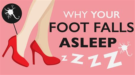 why does a your why does your foot fall asleep