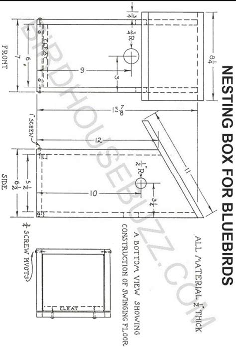 flicker bird house plans flicker bird house plans images