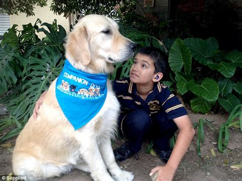 golden retriever autism asperger assistance dogs autism ethiogrio