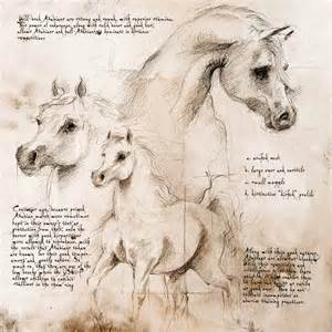 quot arabian trio quot detail of a da vinci style drawing horse