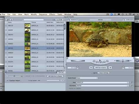 tapeless workflow tapeless workflow with cut pro 7