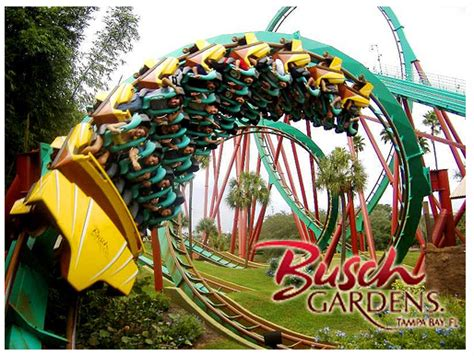 busch gardens ta theme park exclusive access