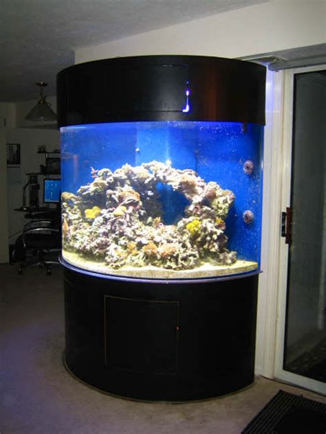 Acrylic Aquarium photo gallery of acrylic fish tanks and aquariums with