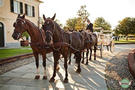 carrozza a cavalli carrozza e cavalli una scelta veramente vintage