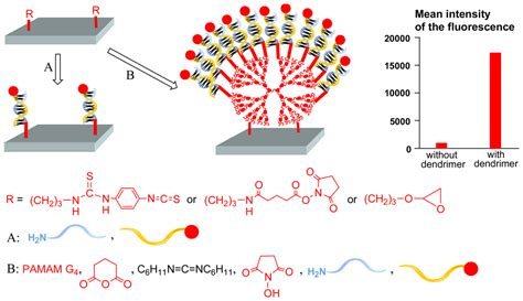 Sensors Free Full Text Uses Of Dendrimers For Dna