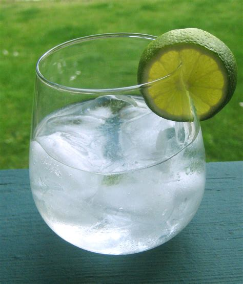 vodka tonic post grad problems 6 low calorie mixed drink options