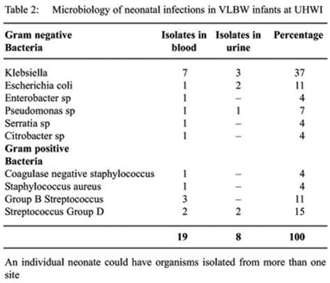 blood culture report sle west indian journal sepsis neonatal en reci 233 n
