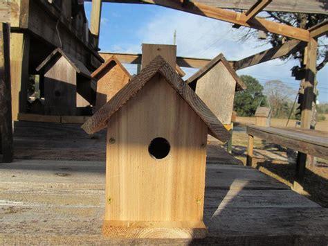 bird house plans for wrens carolina wren bird house plans image mag