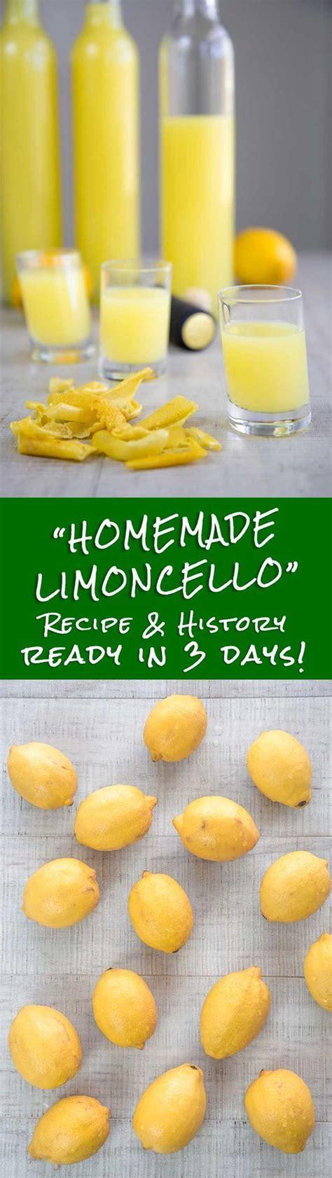 best for limoncello best 25 limoncello recipe ideas on limoncello