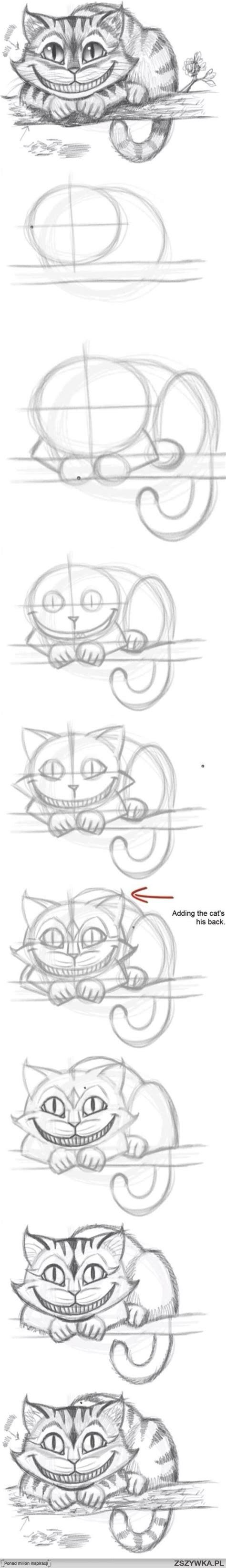 tutorial scribble sketchbook best 20 drawing of a cat ideas on pinterest how to draw
