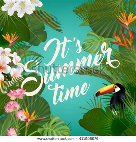 imagenes cool for the summer summer stock images royalty free images vectors