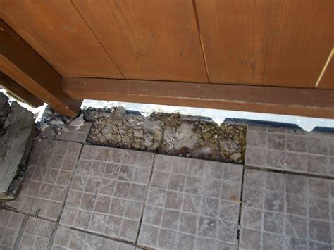 terrasse abdichten terrasse abdichten und beschichten lassen