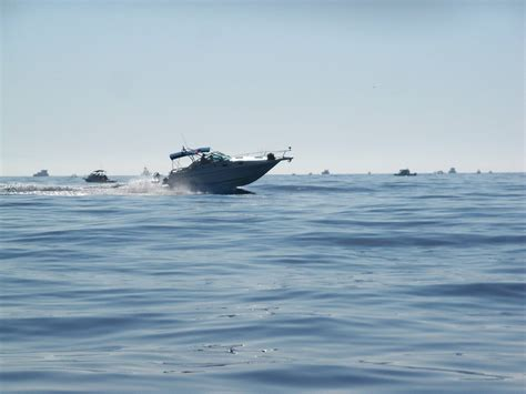 gregor boat drain plug asshat douchenozzle award green bouy 8 28 2015