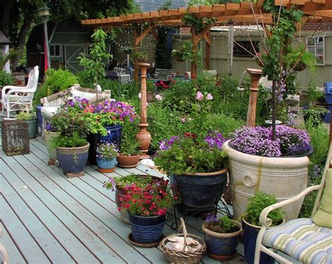 How Not To Kill Plants In Containers, 13 Most Important