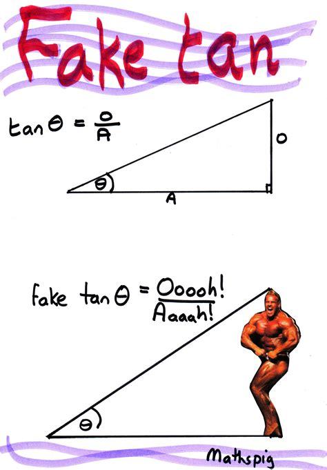 Quotes And Jokes Precalculus Worksheet trigonometry joke mathspig