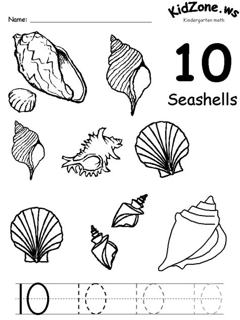 seashell coloring pages preschool oceans theme 10