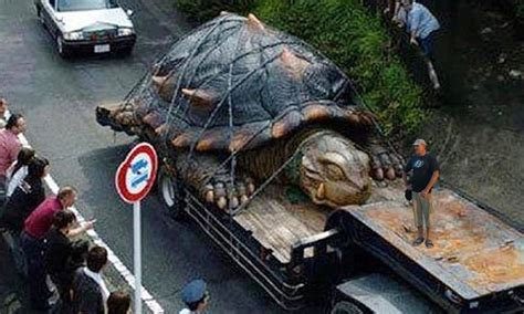 largest in the world world s tortoise real or