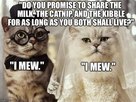 Funny Wedding Memes - funny wedding meme askideas com