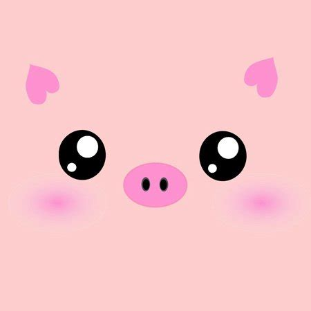 Angry Panda Iphone All Hp pig