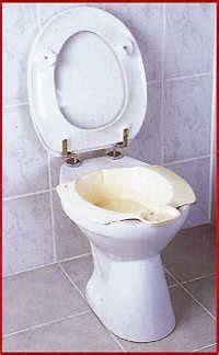 das bidet bad bideteinsatz f 252 r das wc seniorenwohl de der
