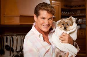 Looking For Freedom David Hasselhoff » Home Design 2017
