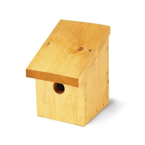 tom chambers snoozy bird nest box feedem