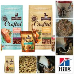 Petsmart Gift Card Balance - dog all things for a healthy dog on pinterest barking wednesday and dog food recall