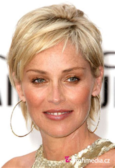 sharon stones new haircut 2014 2014 sharon stone new hairstyle search results