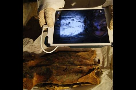 mri and tattoos 3 000 year mummy was covered in tattoos