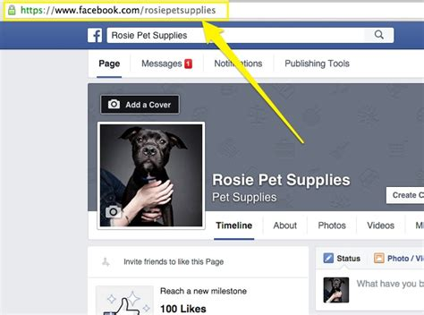 facebook themes url layouts backgrounds blank facebook gallery