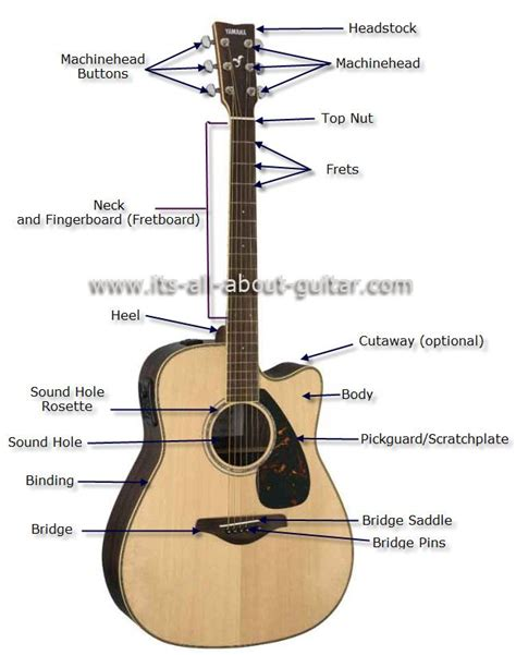 guitar diagram with parts diagram of an acoustic guitar instruments