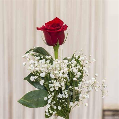 imagenes de flores individuales rosa individual