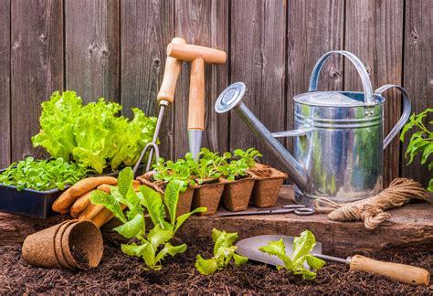 garden tips    pomerado news
