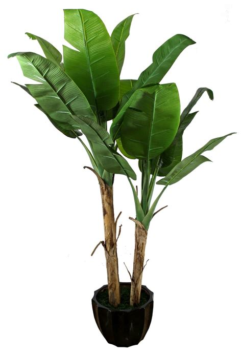 Indoor Decorative Trees For The Home by China Banana Tree Artificial Tree Imitation Plant Jtla