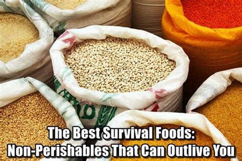 best survival food the best survival foods non perishables that can outlive