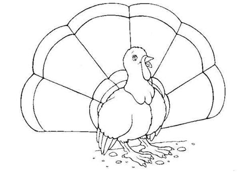 printable blackline turkey farm coloring pages coloring pages to print