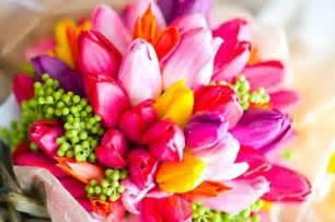 tulips flowers photo 33162269 fanpop