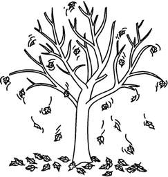 Fall Tree Coloring Page fall tree coloring page az coloring pages