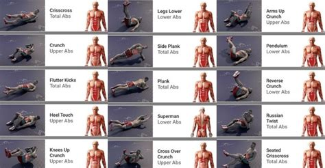 exercise tips    pack abs quora