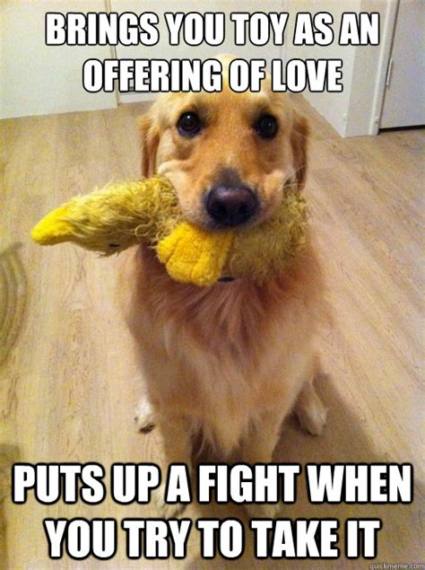 Weekend Dog Meme - image 341407 women logic know your meme