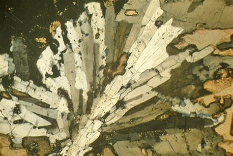sanidine thin section sanidinite laacher see eifel germany thin section