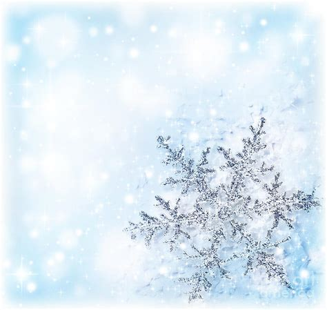 christmas wallpaper portrait christmas holiday background photograph by anna om