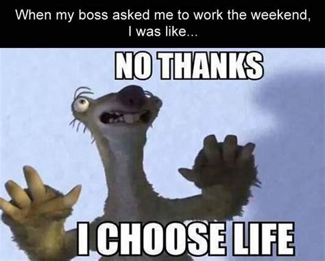 Work Memes Funny - hilarious memes work related pictures to pin on pinterest