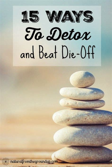 Diatomaceous Earth Aluminum Detox by 15 Ways To Detox And Beat Die Detox And Beats