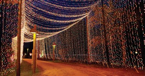 Lights Of Tejas by Bluebonnet Electric Cooperative C Tejas Tradition