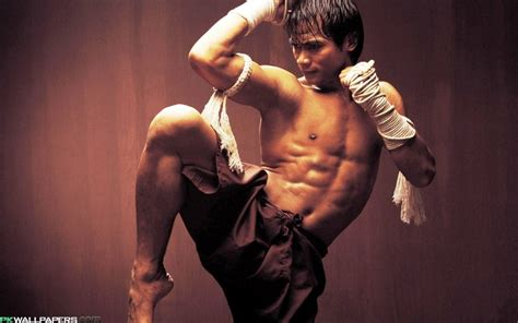 youtube film thailand ong bak tony jaa quotes quotesgram