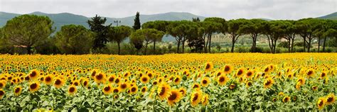 best time visit best time to visit italy climate guide audley travel
