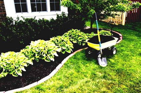 simple backyard landscaping ideas on a budget diy front yard landscaping ideas on a budget home design